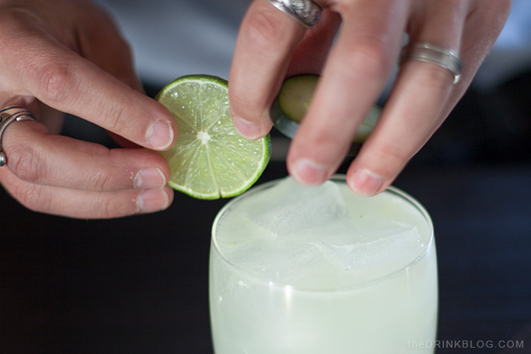 garnish with cucumber and lime