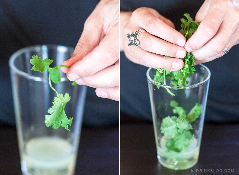 add cilantro to the shaker